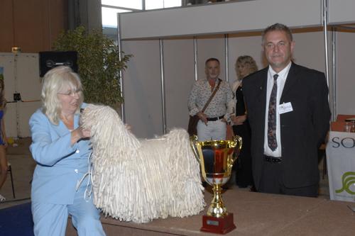 2010 best La Roche sur Yon