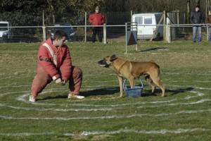 Ring au Club Canin Yonnais en mars 2010