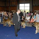 voir les meilleurs chiens de l'exposition 2010